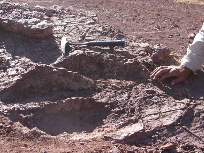 Huella gigante encontrada en Iouaridène