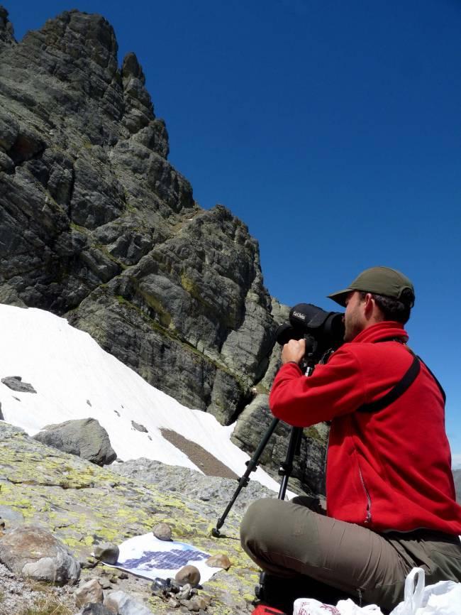 Investigadores de la Universidad de León lo han desarrollado ante las dificultades para seguir a una especie amenazada, Primula pedemontana, en la Montaña Palentina