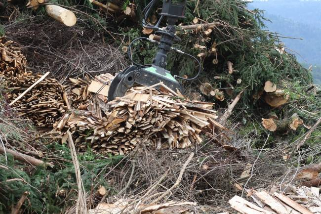 La materia orgánica utilizada para biomasa se encuentra muy dispersa geográficamente.