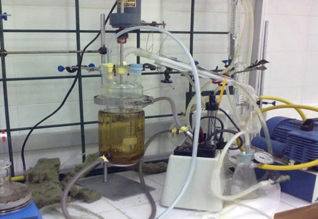 Colaboración entre la Universidad de Salamanca y el Centro de Investigación de Polímeros Avanzados (CIPA) de Chile