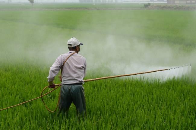Un hombre aplica un herbicida