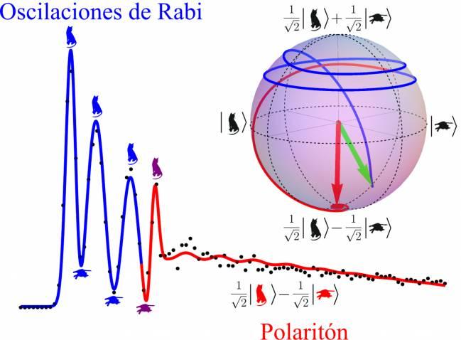 Controlan oscilaciones ultrarrápidas entre luz y materia