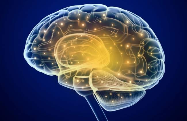 Trabajos recientes habían demostrado la comunicación entre un cerebro humano y un ratón; pero la tecnología todavía no había logrado el reto de poner en contacto dos cerebros humanos.