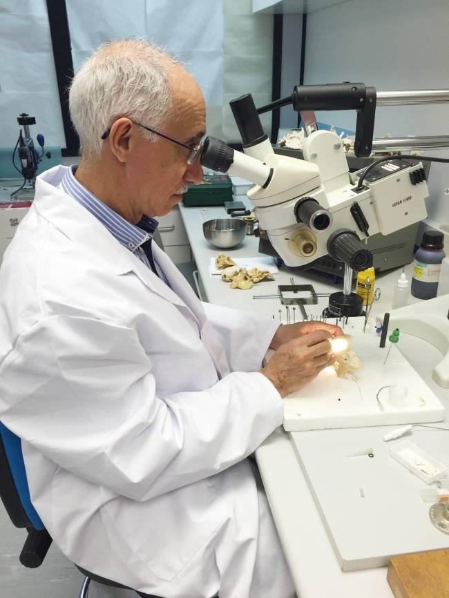 El investigador principal del proyecto, Rafael Urquiza / Fundación Descubre