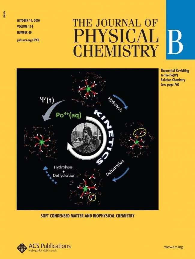 Portada del Journal of Physical Chemistry B en 2010