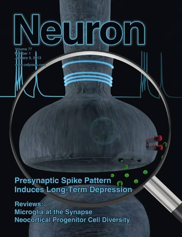 Portada de la revista Neuron