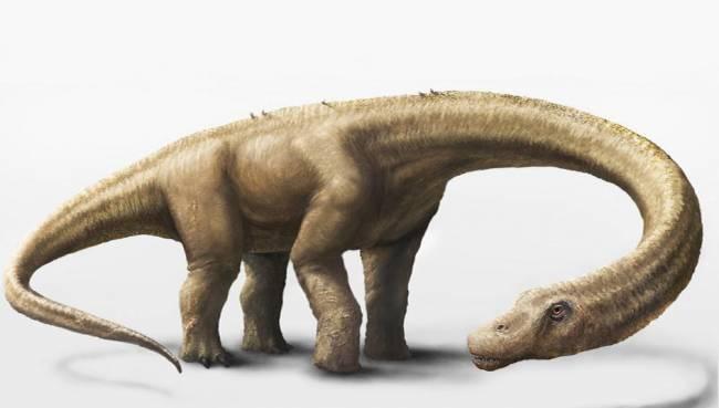 Representación en 3D del Dreadnoughtus schrani