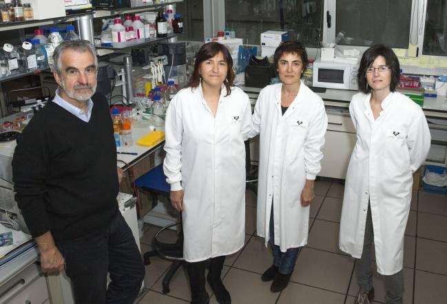 Equipo de investigadores de la Facultad de Ciencia y Tecnología y BCMaterials