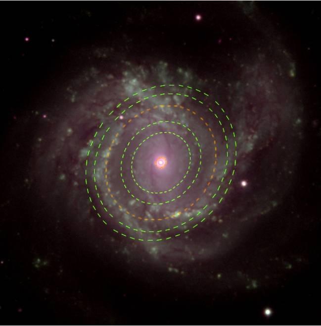 Imagen de Messier 61, una de las galaxias estudiadas. Superpuestos, están trazados los anillos de ondas obtenidos en esta galaxia. //Fuente: SLOAN + IACbia