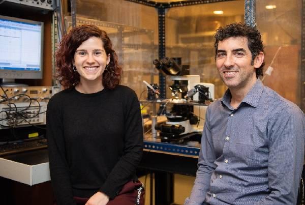Los investigadores Alba Andrés-Bilbé y Xavier Gasull, de la Facultad de Medicina y Ciencias de la Salud, del Instituto de Neurociencias de la Universidad de Barcelona (UBNeuro) y del Grupo de Investigación en Neurofisiología del IDIBAPS.