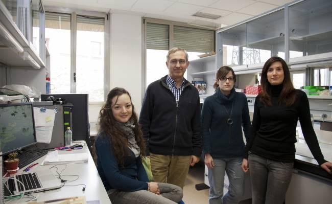 El Centro de Investigación del Cáncer de Salamanca publica un trabajo que servirá para entender el papel de las proteínas en las células humanas