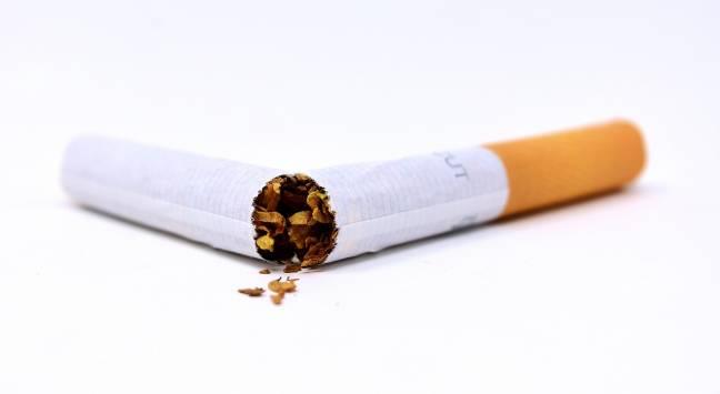 Un cigarro partido en dos