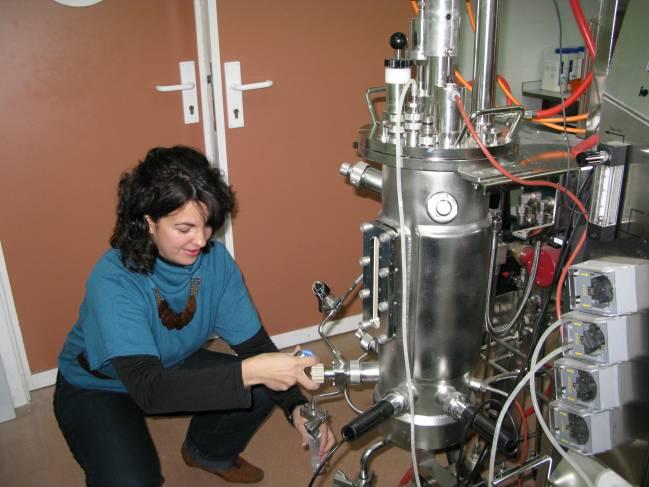 Biorreactor diseñado para la descomposición del cianuro