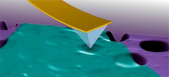 Caracterizan las propiedades mecánicas del disulfuro de molibdeno, un prometedor material para la electrónica flexible
