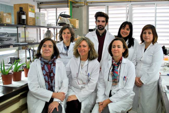 Grupo Plantas Medicinales