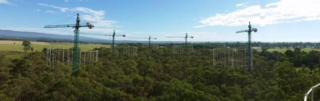 Este proyecto se ha llevado a cabo tres años en las instalaciones experimentales EucFACE, de la Western Sydney University