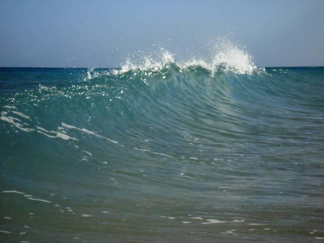 La aplicación proporciona información sobre corrientes, oleaje, mareas, temperatura del mar y del aire. Imagen: fra.ps