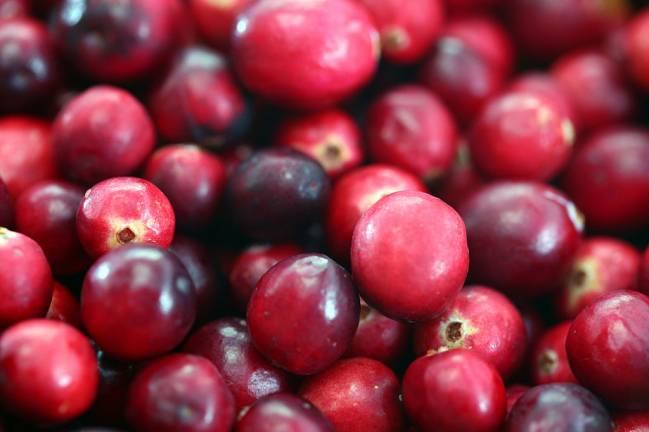 Los extractos de arándano disponibles en el mercado son muy heterogéneos en cuanto a composición  (FOTO: WIKIMEDIA)