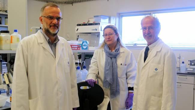 El doctor Fèlix Grases, a la derecha, junto a investigadores del Laboratorio de Investigación en Litiasis Renal y Biomineralización de la UIB. Foto: UIB