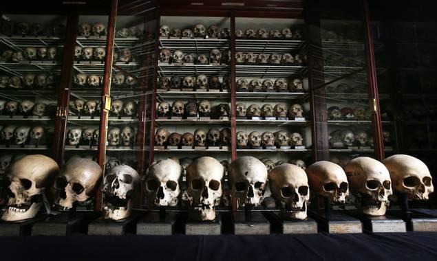 Colección de cráneos procedentes de las Islas Canarias en la Universidad de Edimburgo
