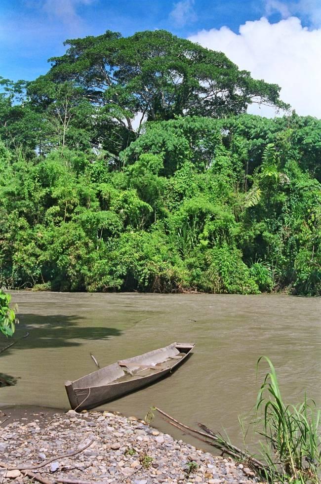Finca Bonanza, en el Amazonas. Imagen: Salvador Salvador