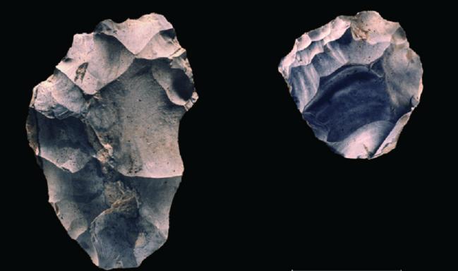 Herramientas de piedra, homínidos