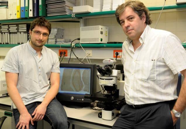 El Dr. Albert Giralt y Jordi Alberch