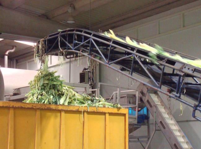 Generación de subproductos vegetales