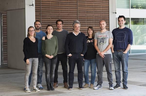 Grupo de investigación en Biologia de las Células B del IMIM