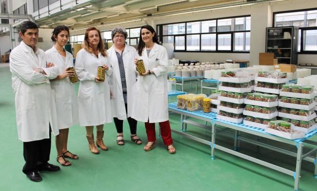 Investigadores del Grupo de Química y Bioquímica de Pigmentos y del Grupo de Antimicrobianos Naturales, ambos del Instituto de la Grasa de Sevilla (CSIC) / Fundación Descubre