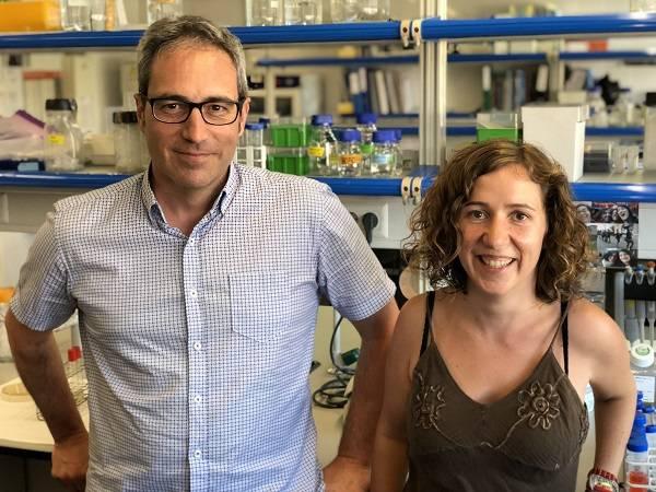 Los investigadores Bru Cormand y Noèlia Fernàndez Castillo