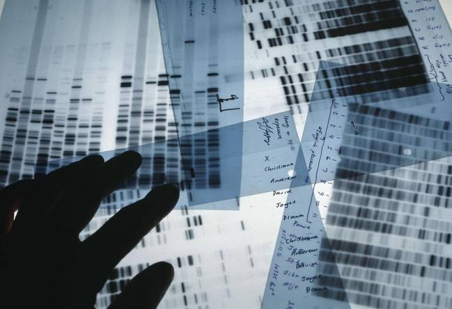 DNA-PROKIDS LOGO