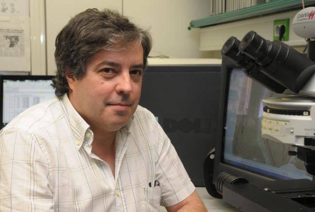 Jordi Alberch,  acaba de ser nombrado presidente electo de la SENC