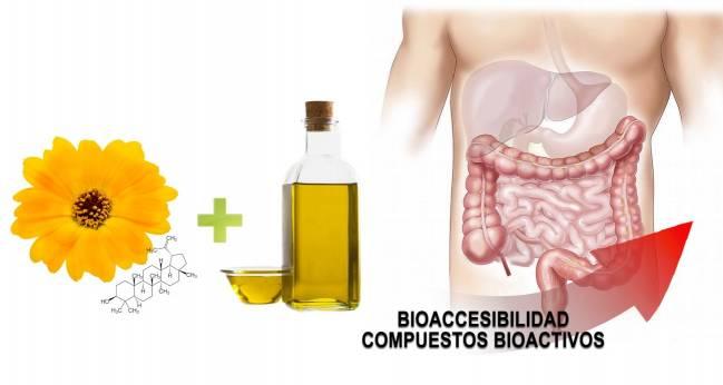 Bioaccesibilidad de compuestos bioactivos.