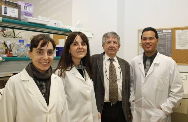 De izquierda a derecha, los investigadores de la UPO Teresa Jurado, Agnès Gruart, José María Delgado y Raudel Sánchez