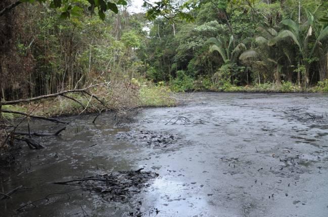 Amazonas contaminado