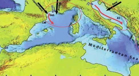 El noroeste del Mediterráneo es una de las regiones marinas de referencia en el estudio de la formación de aguas densas.