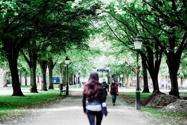 parque con gente paseando