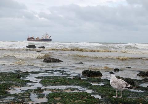 El índice contempla la distancia desde la costa hasta el lugar donde ocurre cada incidente marítimo, la magnitud del vertido liberado, la forma y longitud de la zona costera potencialmente afectada y el efecto de las corrientes oceánicas.
