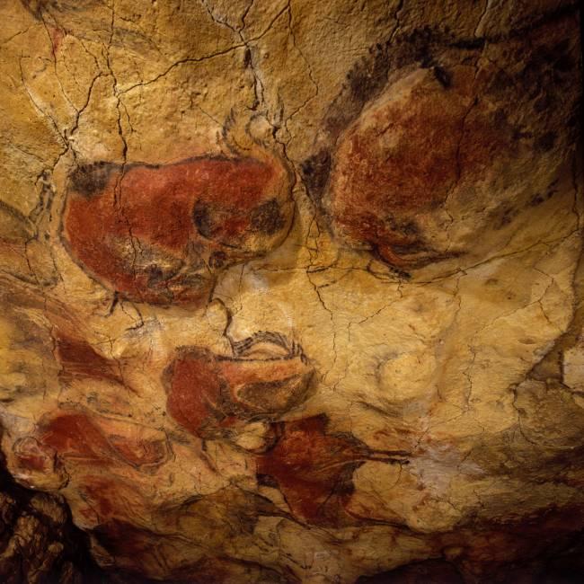 Techo de los Polícromos de la cueva de Altamira bajo los que previamente se realizaron signos y animales rojos - copyright Museo de Altamira / Pedro Saura