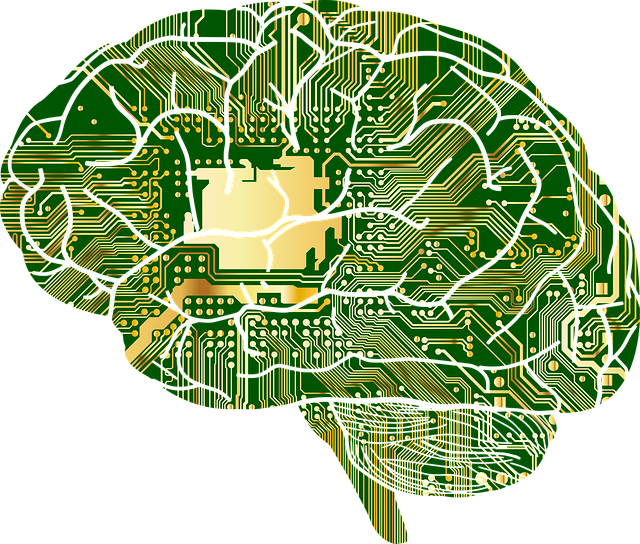 ilustración de cerebro con conexiones