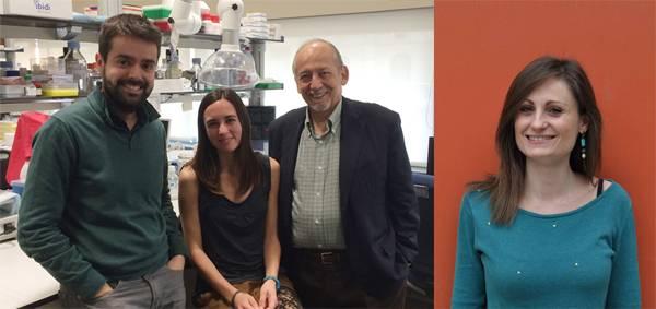 De izquierda a derecha: Dr. Jordi Gracia-Sancho, Raquel Maeso-Díaz, Dr. Jaume Bosch, Giusi Marrone