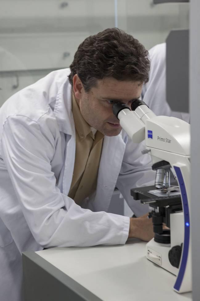 Conrado Martínez, investigador de la UJI.