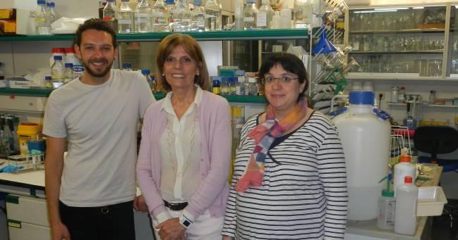 De izq. a dcha.: Carlos M. Minutti (primer autor), Cristina Casals (corresponding author), y Belen García-Fojeda (2º autor). / C. Casals.