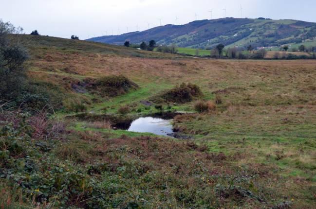 Vista de la Turbera de La Molina, donde se ha llevado a cabo el estudio. / venasalas.com