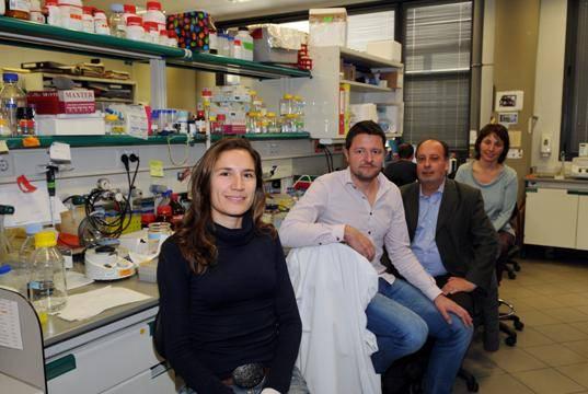 De izquierda a derecha, Daniela Rossi, Lluís Pujadas, Eduardo Soriano y Natàlia Carulla.