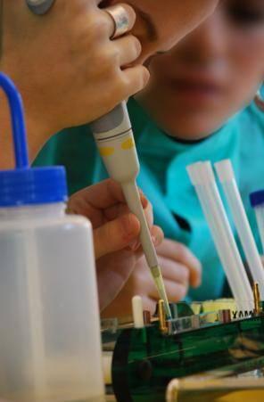 La UB lidera la primera posición de las universidades de todo el Estado en el nuevo ranking de Leiden 2011‑2012,