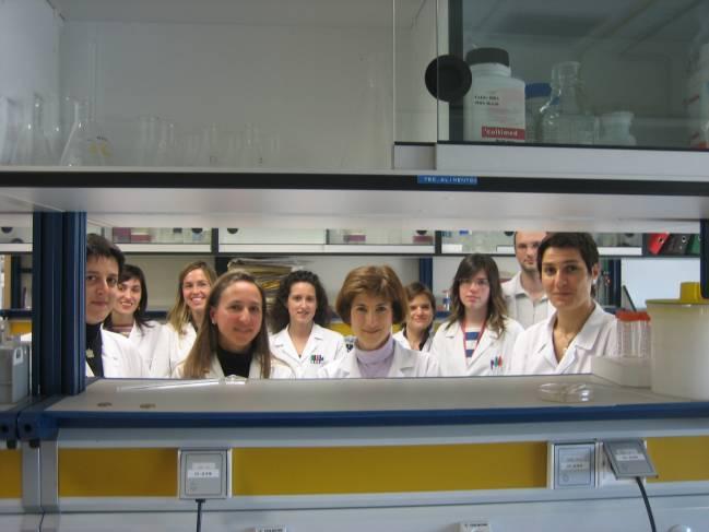El grupo de investigación.