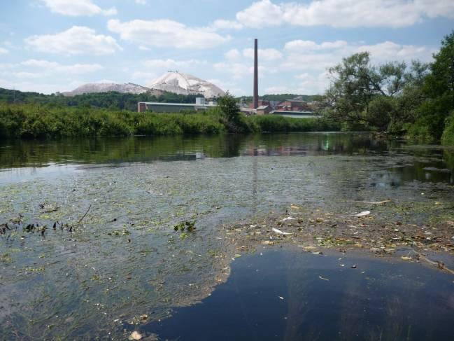 El incremento en la demanda de agua y el cambio climático aumentarán la concentración de sales en los ríos y lagos de todo el mundo. (Foto: EcoRing)