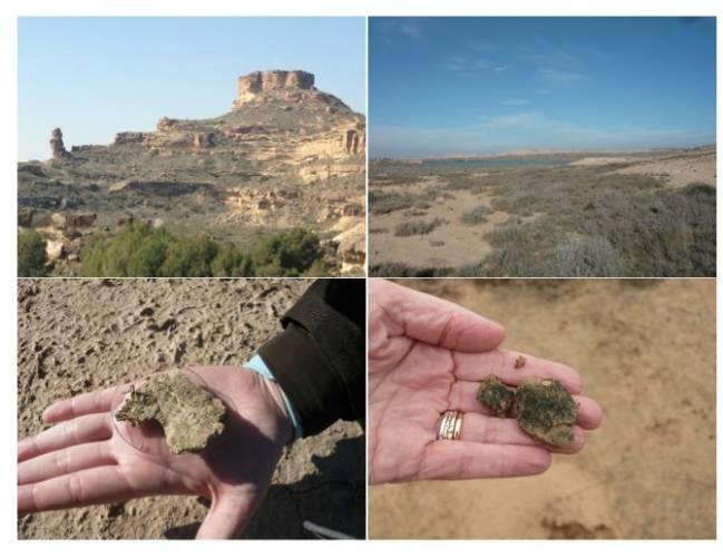 Espacios naturales áridos y muestras de suelo analizadas en la investigación.